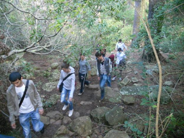 Kirstenbosch photo (1)